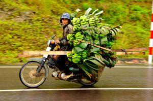 Banana-Bike,-Vietnam.jpg