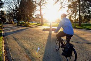 Mayor-Robertson-on-bike.jpg