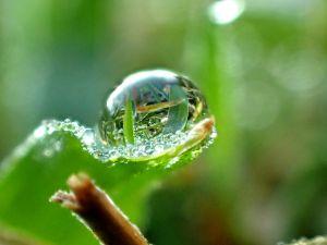 Drop-w-droplets-c27.jpg
