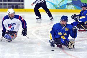 Para-Olympic-sledge-hockey-c75.jpg