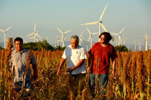 Farmers,-wind-farm,-Mexico.jpg